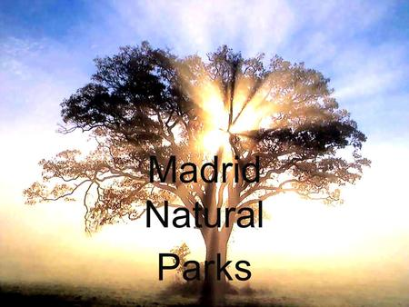 Madrid Natural Parks. These are some of the natural parks of Madrid: 1234 5678.