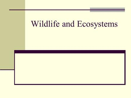 Wildlife and Ecosystems. Chapter 23 Sustain Ecosystems: Land Use Conservation Management.