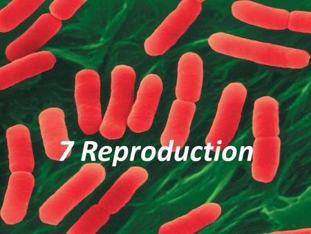 7 Reproduction. Reproduction: making offspring Reproduction according to embedded genetic instructions is a characteristic of living organisms. Two types.