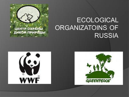 ECOLOGICAL ORGANIZATOINS OF RUSSIA. Today our environment and wildlife are in danger. Every day the situation becomes worse and worse.  Our project is.