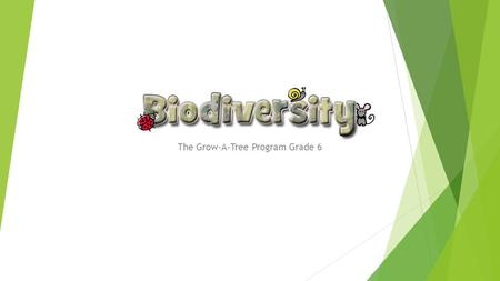 "The Grow-A-Tree Program Grade 6. What is ""biodiversity""?  Biodiversity means ""variety of life""  Three different types of biodiversity:  Diversity of."