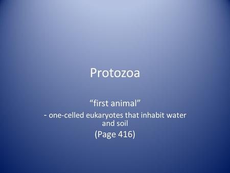 "Protozoa ""first animal"" - one-celled eukaryotes that inhabit water and soil (Page 416)"