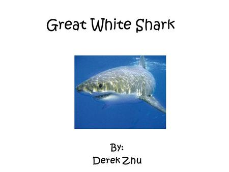 Great White Shark By: Derek Zhu. Characteristics The great white shark is a fish and is cold blooded. They are vertebrates. They can be 20 feet wide and.