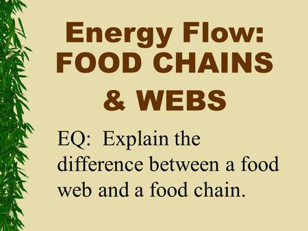 Energy Flow: FOOD CHAINS & WEBS EQ: Explain the difference between a food web and a food chain.