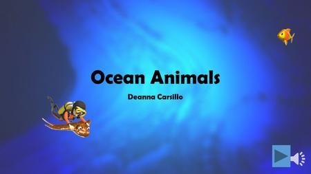 Ocean Animals Deanna Carsillo.