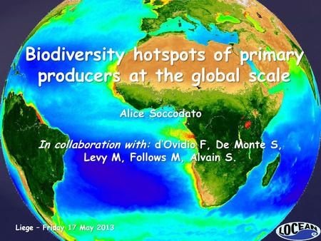 Biodiversity hotspots of primary producers at the global scale Alice Soccodato In collaboration with: d'Ovidio F, De Monte S, Levy M, Follows M, Alvain.