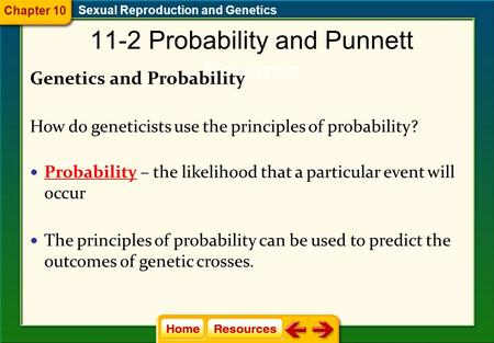 11-2 Probability and Punnett Squares Genetics and Probability How do geneticists use the principles of probability? Probability – the likelihood that.