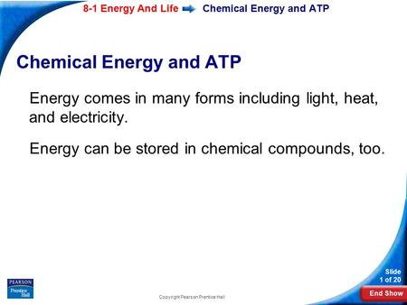 End Show Slide 1 of 20 8-1 Energy And Life Copyright Pearson Prentice Hall Chemical Energy and ATP Energy comes in many forms including light, heat, and.