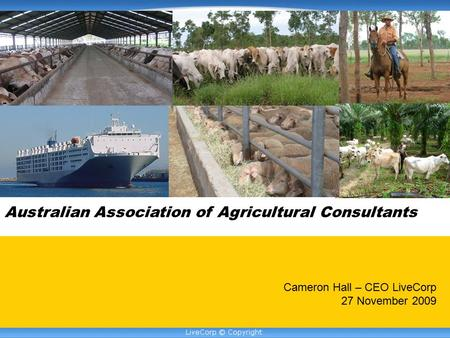 Australian Association of Agricultural Consultants Cameron Hall – CEO LiveCorp 27 November 2009.
