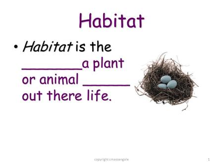1 Habitat Habitat is the _______a plant or animal ______ out there life. Habitat is the _______a plant or animal ______ out there life. copyright cmassengale.