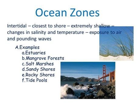 Ocean Zones Intertidal – closest to shore – extremely shallow – changes in salinity and temperature – exposure to air and pounding waves A.Examples a.Estuaries.