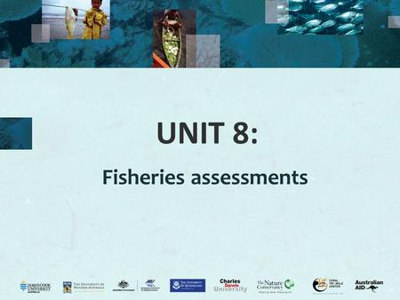 "UNIT 8: Fisheries assessments. 2 Fisheries data Why do we need fisheries data? FAO (2005): ""Information is critical to EAF. It underpins the formulation."