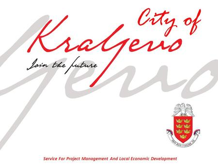 Service For Project Management And Local Economic Development City of.