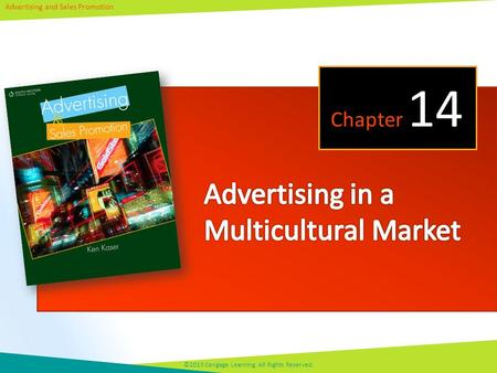 Advertising and Sales Promotion ©2013 Cengage Learning. All Rights Reserved. Chapter 14.