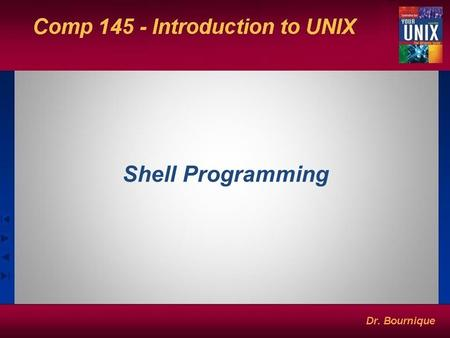 Shell Programming. Creating Shell Scripts: Some Basic Principles A script name is arbitrary. Choose names that make it easy to quickly identify file function.