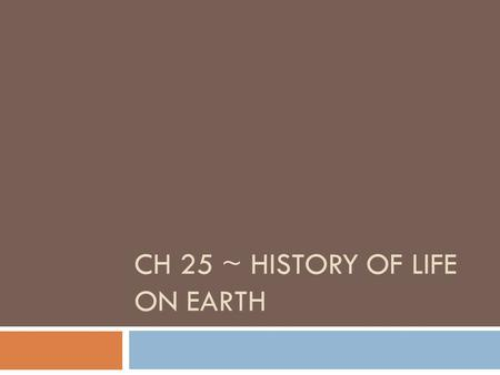 CH 25 ~ HISTORY OF LIFE ON EARTH. The Origin of Life  1 st fossil evidence 3.5 BYA (Earth ~4.6 BY old)  4 stages  1 – abiotic synthesis of organic.