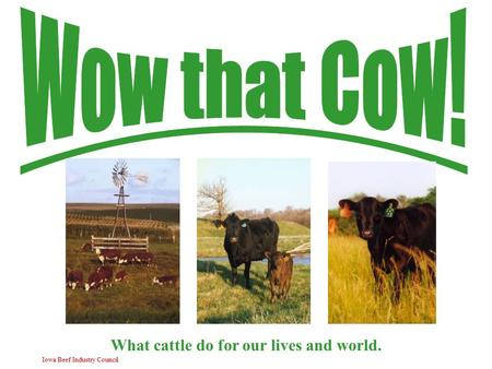 Iowa Beef Industry Council What cattle do for our lives and world.