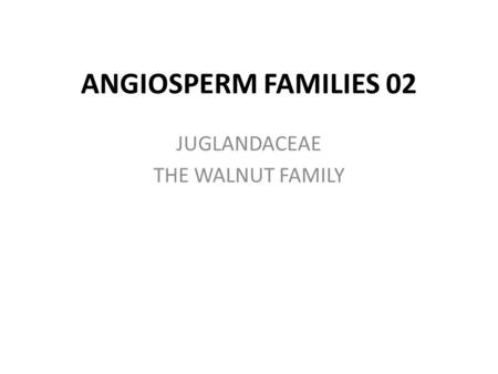 ANGIOSPERM FAMILIES 02 JUGLANDACEAE THE WALNUT FAMILY.