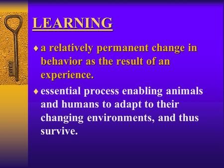 LEARNING  a relatively permanent change in behavior as the result of an experience.  essential process enabling animals and humans to adapt to their.