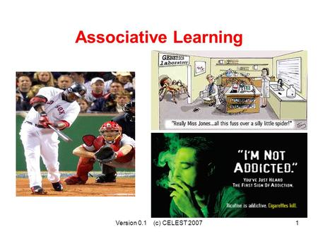 Version 0.1 (c) CELEST 20071 Associative Learning.