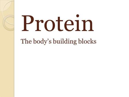 Protein The body's building blocks. Proteins main function Build and repair body tissue Provides some energy.