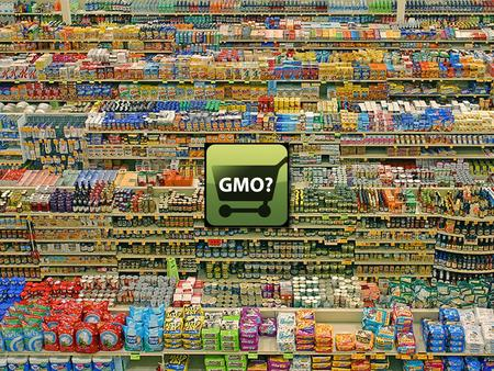 Genetically Modified Organisms (GMOs) The debate over Biotechnology's GMOs.