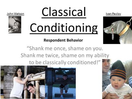 "Classical Conditioning ""Shank me once, shame on you. Shank me twice, shame on my ability to be classically conditioned!"" John WatsonIvan Pavlov Respondent."