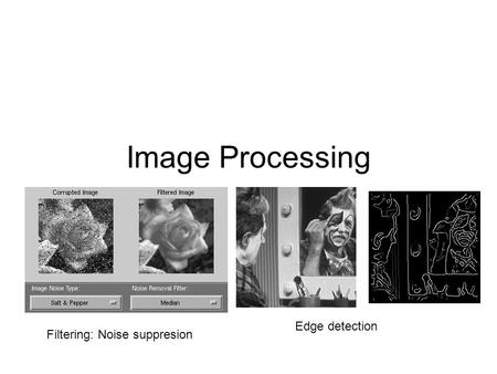 Image Processing Filtering: Noise suppresion Edge detection.