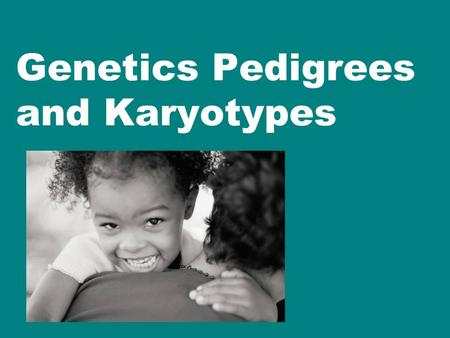 Genetics Pedigrees and Karyotypes. Karyotype What to look for in a karyotype? When analyzing a human karyotype, scientists first look for these main.