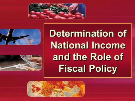 Determination of National Income and the Role of Fiscal Policy.