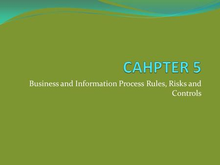 Business and Information Process Rules, Risks and Controls.