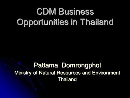 cdm business plan