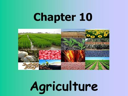 Chapter 10 Agriculture. Quick Review Primary Economic Activities: Closest to the ground, for example—agriculture, ranching, fishing, mining etc. Secondary.