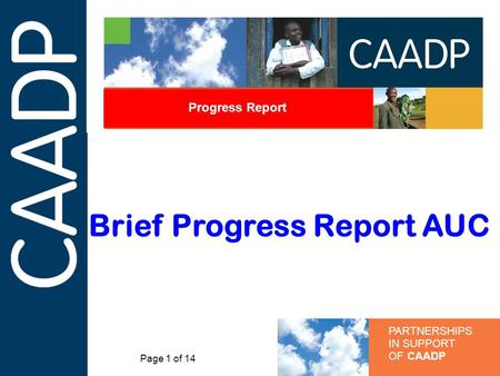 PARTNERSHIPS IN SUPPORT OF CAADP Progress Report Brief Progress Report AUC Page 1 of 14.