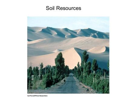 Soil Resources 14.