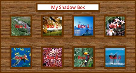 Box 1Box 4Box 3Box 2 Box 5Box 8Box 7Box 6 My Shadow Box.