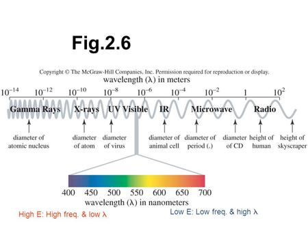 Fig.2.6 High E: High freq. & low  Low E: Low freq. & high.