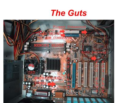 The Guts. CPU CPU Socket The CPU is generally a 2 inch ceramic square with a silicon chip located inside. The chip usually about the size of a thumbnail.
