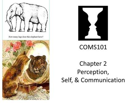 COMS101 Chapter 2 Perception, Self, & Communication.