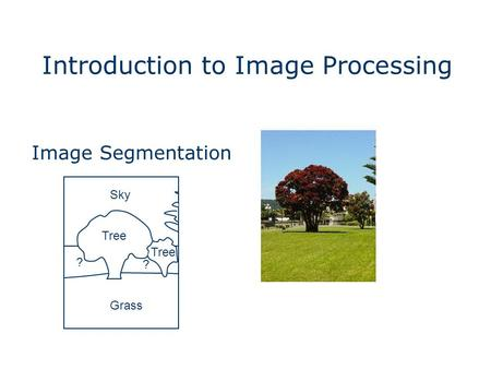 Introduction to Image Processing Grass Sky Tree ? ? Image Segmentation.