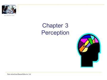 Parts taken from Human Behavior 2ed Chapter 3 Perception.
