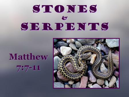 Stones & Serpents Matthew 7:7-11. Ask, and it will be given to you; seek, and you will find; knock, and it will be opened to you. 8 For everyone who asks.