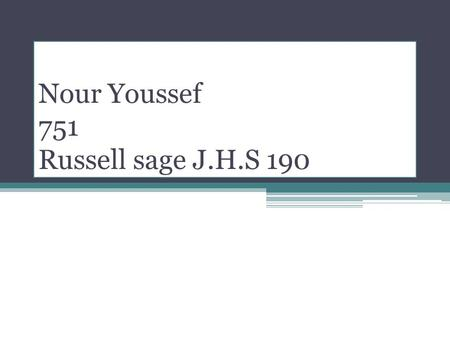 Nour Youssef 751 Russell sage J.H.S 190. I like my twin brothers.