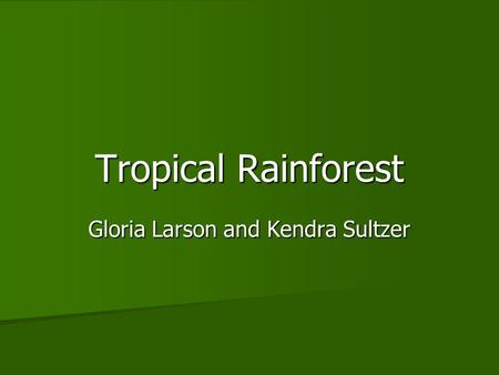 Tropical Rainforest Gloria Larson and Kendra Sultzer.