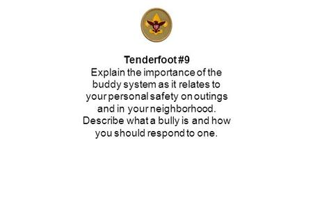 Tenderfoot #9 Explain the importance of the buddy system as it relates to your personal safety on outings and in your neighborhood. Describe what a bully.
