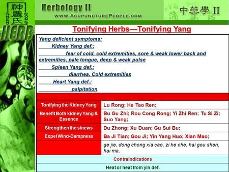Tonifying Herbs—Tonifying Yang Yang deficient symptoms: Kidney Yang def.: Kidney Yang def.: fear of cold, cold extremities, sore & weak lower back and.