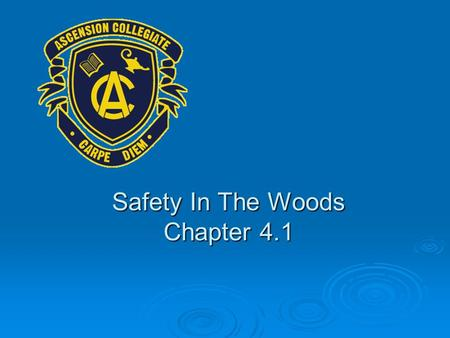Safety In The Woods Chapter 4.1. Preparation For The Woods Preparation & common sense are the keys to having an enjoyable outdoor activity and returning.