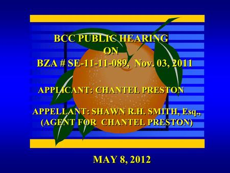 MAY 8, 2012 BCC PUBLIC HEARING ON BZA # SE-11-11-089, Nov. 03, 2011 APPLICANT: CHANTEL PRESTON APPELLANT: SHAWN R.H. SMITH, Esq., (AGENT FOR CHANTEL PRESTON)