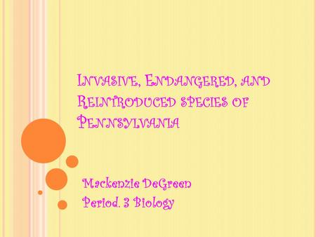 I NVASIVE, E NDANGERED, AND R EINTRODUCED SPECIES OF P ENNSYLVANIA Mackenzie DeGreen Period. 3 Biology.