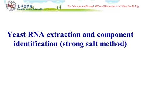 The Education and Research Office of Biochemistry and Molecular Biology Yeast RNA extraction and component identification (strong salt method)